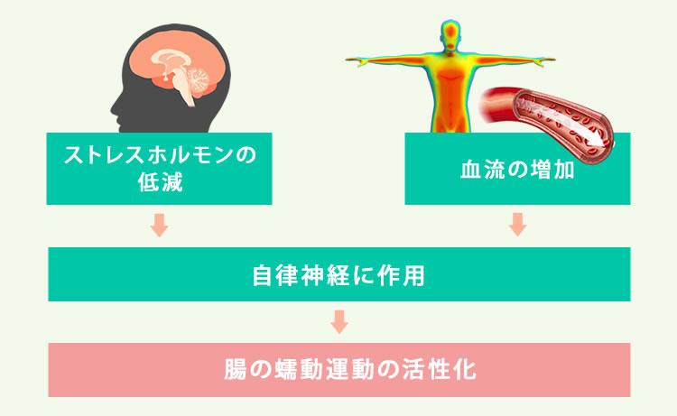 腸管蠕動運動の亢進
